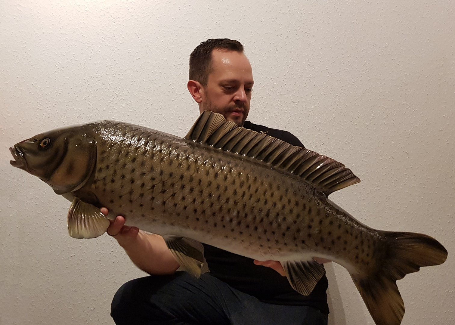 Common carp 90 cm (slim wild form)